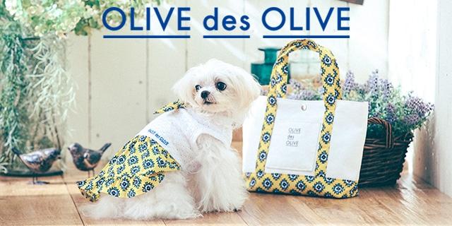 大人になっていく知的女子のためのシンプルガーリ−スタイル OLIVE des OLIVE