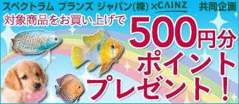 スペクトラム ブランズ ジャパン(株)×CAINZ 共同企画