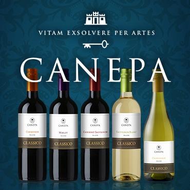 CANEPA チリの名門ワイナリー カインズがお手頃価格で自信を持ってお勧めするワインです!