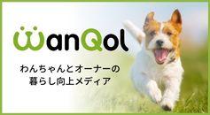WanQol